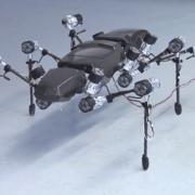 Гигантское насекомое-робот сделало первые шаги