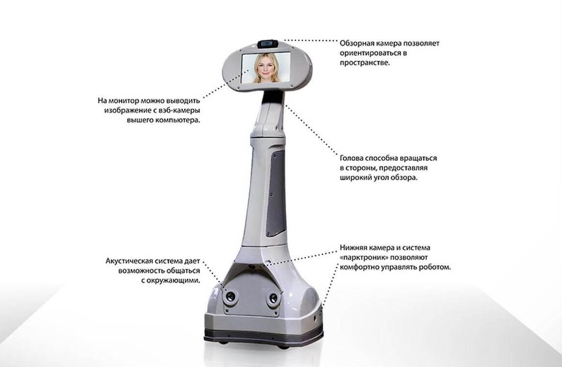 робот телеприсутствия webot аренда